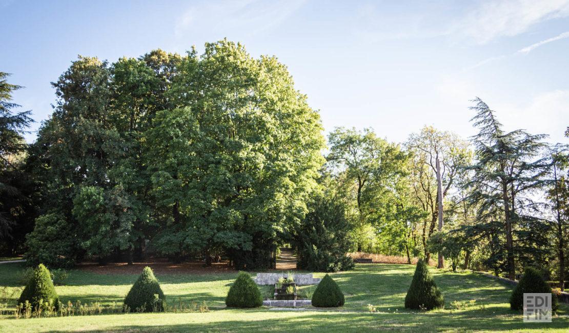 Parc de Buisson-Rond   Anna Ivanova Photography